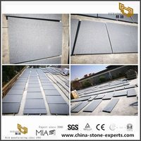 G654 Padang Grey Flamed And Brushed Wall Cladding Tiles with Slot