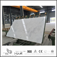 Best New Arrival Arabescato Venato White Marble for Bathroom Decoration (YQW-MSA051401)