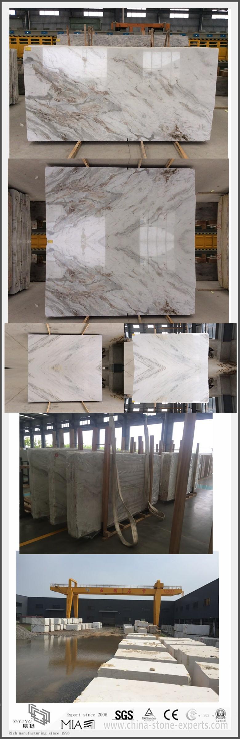 TOP Arabescato Venato marble