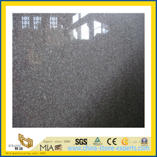 Natural Stone Polished Yellow G664 Granite Countertop for Kitchen/Bathromm (YQC)