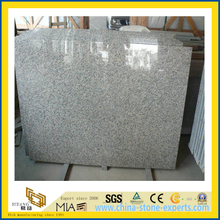 Natural Stone Polished Tiger White Granite Countertop for Kitchen/Bathromm (YQC)